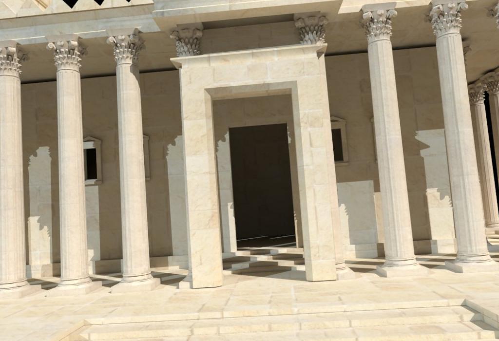 Bel 3 Palmyra Moskito Crop 0