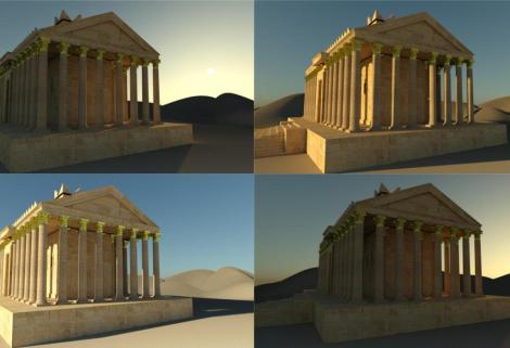 Palmyra_moskito-crop_0